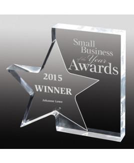 "Screen Printed Standing Star Award (7 3/4""x 7""x 1"")"