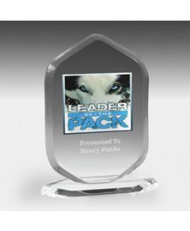 "Ocean Series Billboard Award w/4-Color Process (5""x 6 3/4"")"