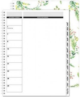 """TheDirector™ ClearView Monthly Planner w/Chip Back (8.5""""x11"""")"""