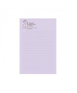 "4""x6"" BIC® Adhesive 25 Sheet Notepad"