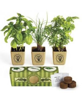 GrowPot Eco-Planter Herb 3-Pack