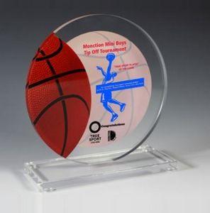 "Basketball Achievement Award - Screen Printed - (5¾"" x 6¼"")"